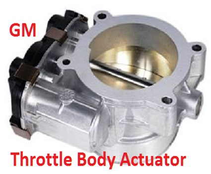 Throttle body and actuator assembly.